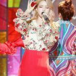 Transparent Short Flower Shirt | Solar – Mamamoo