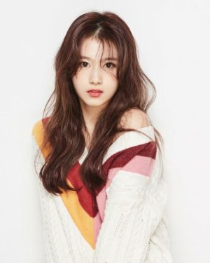 Colorful Pullover | Sana – Twice