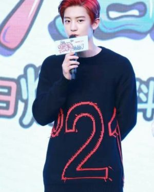 No 21 Sweater | Chanyeol – EXO
