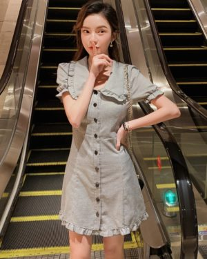 Yeri Plaid Doll Collar Grey Dress (8)