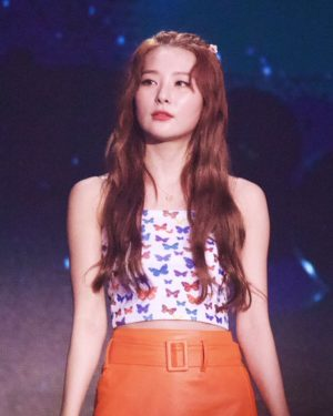Butterfly Tube Crop Top | Seulgi – Red Velvet