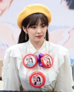 Ruffled Long Sleeved Blouse   Irene – Red Velvet