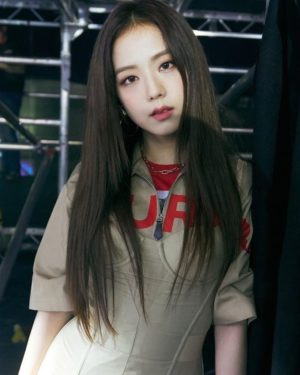 Red Deer Print T-Shirt | Jisoo – BlackPink