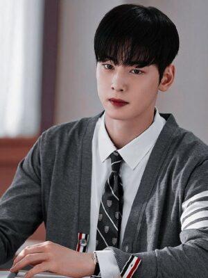 Grey Cardigan With Stripes | Lee Su Ho – True Beauty