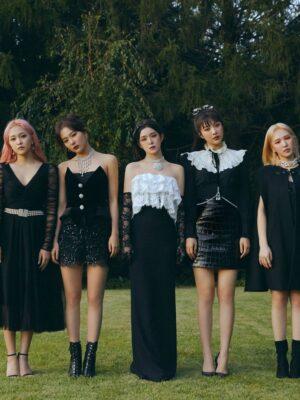 Black Leather Animal Skin Skirt | Joy – Red Velvet