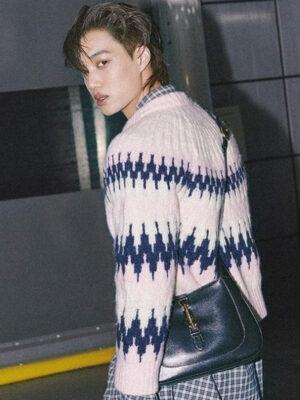 Pink Zigzag Jacquard Sweater | Kai – EXO