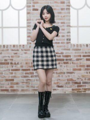 Plaid Pattern Woolen Mini Skirt | Soojin – (G)I-DLE