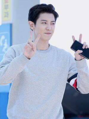 Grey Sweatshirt With Tricolor Bars | Chanyeol – EXO