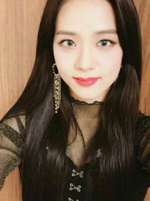 Round Crystal Dangling Earrings   Jisoo – BlackPink